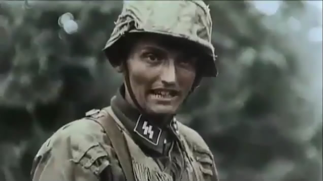SS Officer wearing camo smock  Waffen Ss Officer Color
